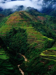 rice terraces around banaue philippines